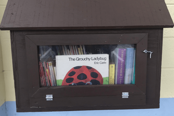 A tiny brown container, with a window that is displaying 'The Grouchy Ladybug' by Eric Carle.
